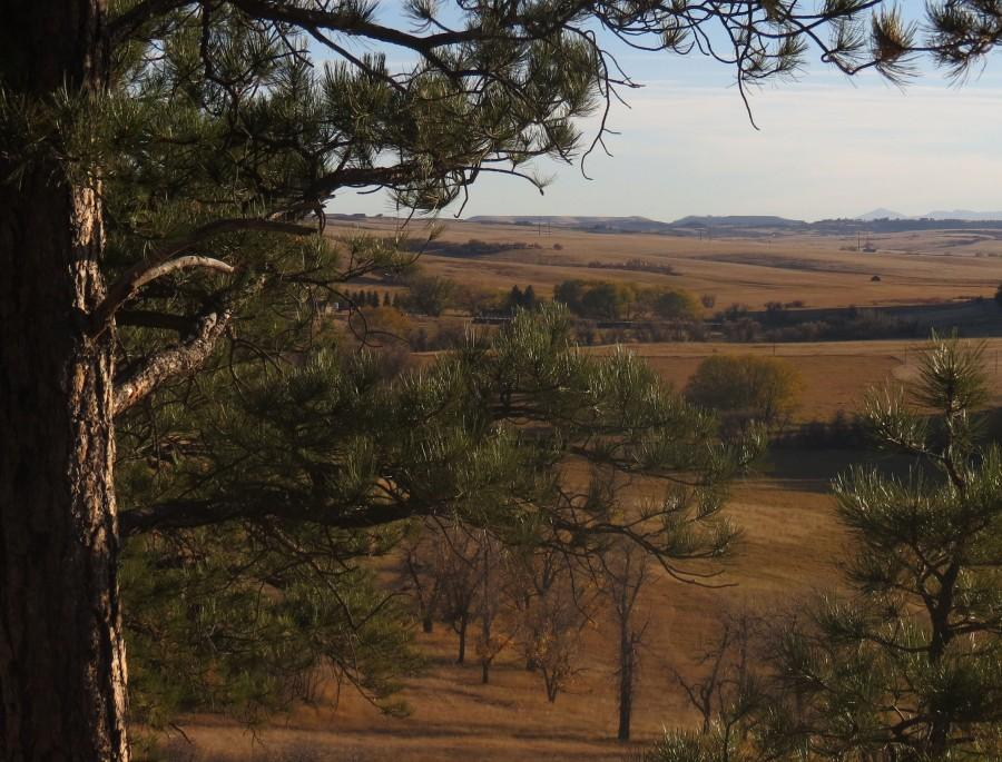 One of the many amazing views captured at Castlewood Canyon.