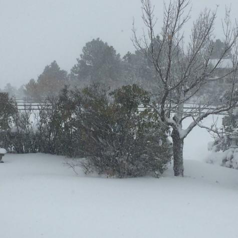 Snow Day or Snow Delay?