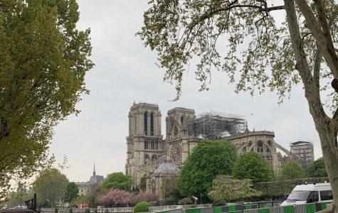 Notre Dame: Our Lady of Paris